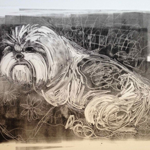Lazy-Dog-Monotype